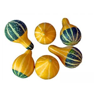 PearBiColor.jpg (300×300)